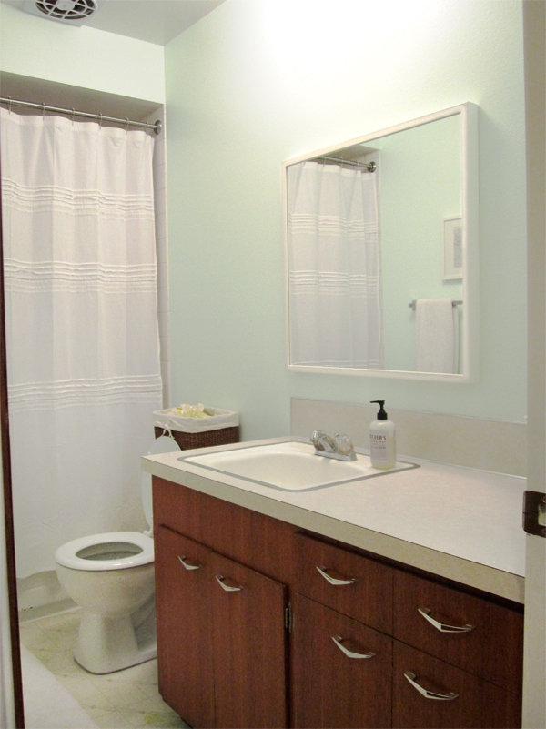 Endearing 40 Bathroom Mirror Ikea Design Inspiration Of