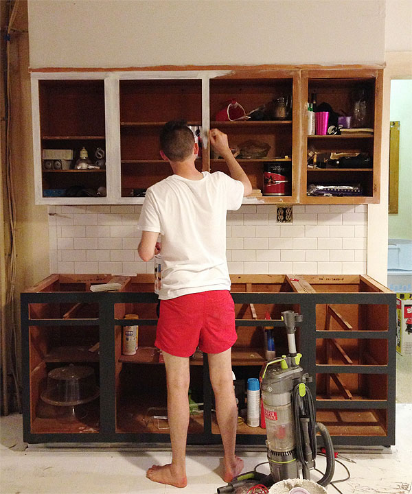 5 Thoughts You Have As Ikea Kitchen Doors On Existing