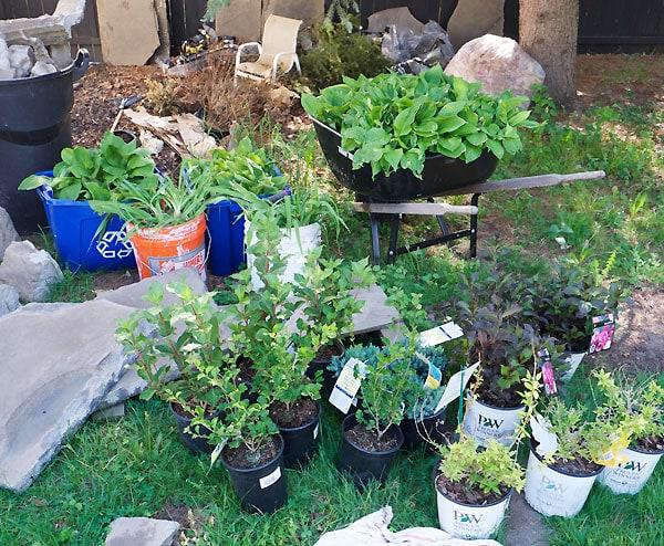 plantstockpile