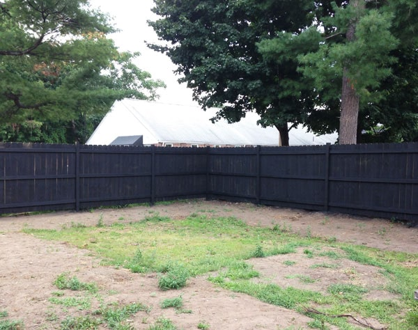 Fence Staining! | Manhattan Nest